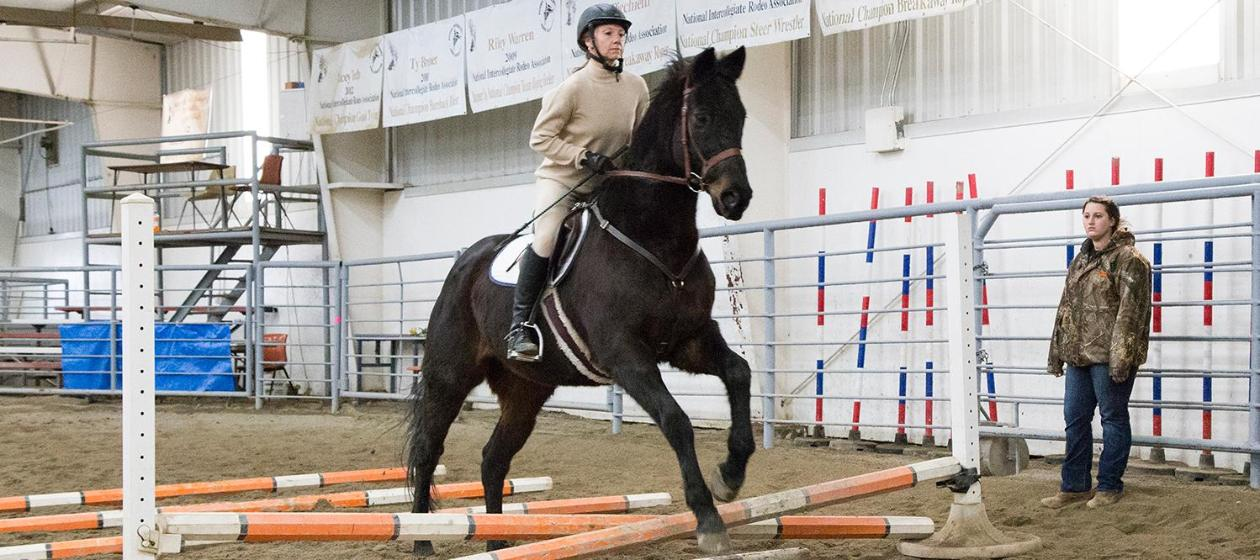 Equestrian riding a horse through an indoor jumping course with obstacles down