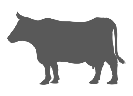 Icon of gray cow graphic