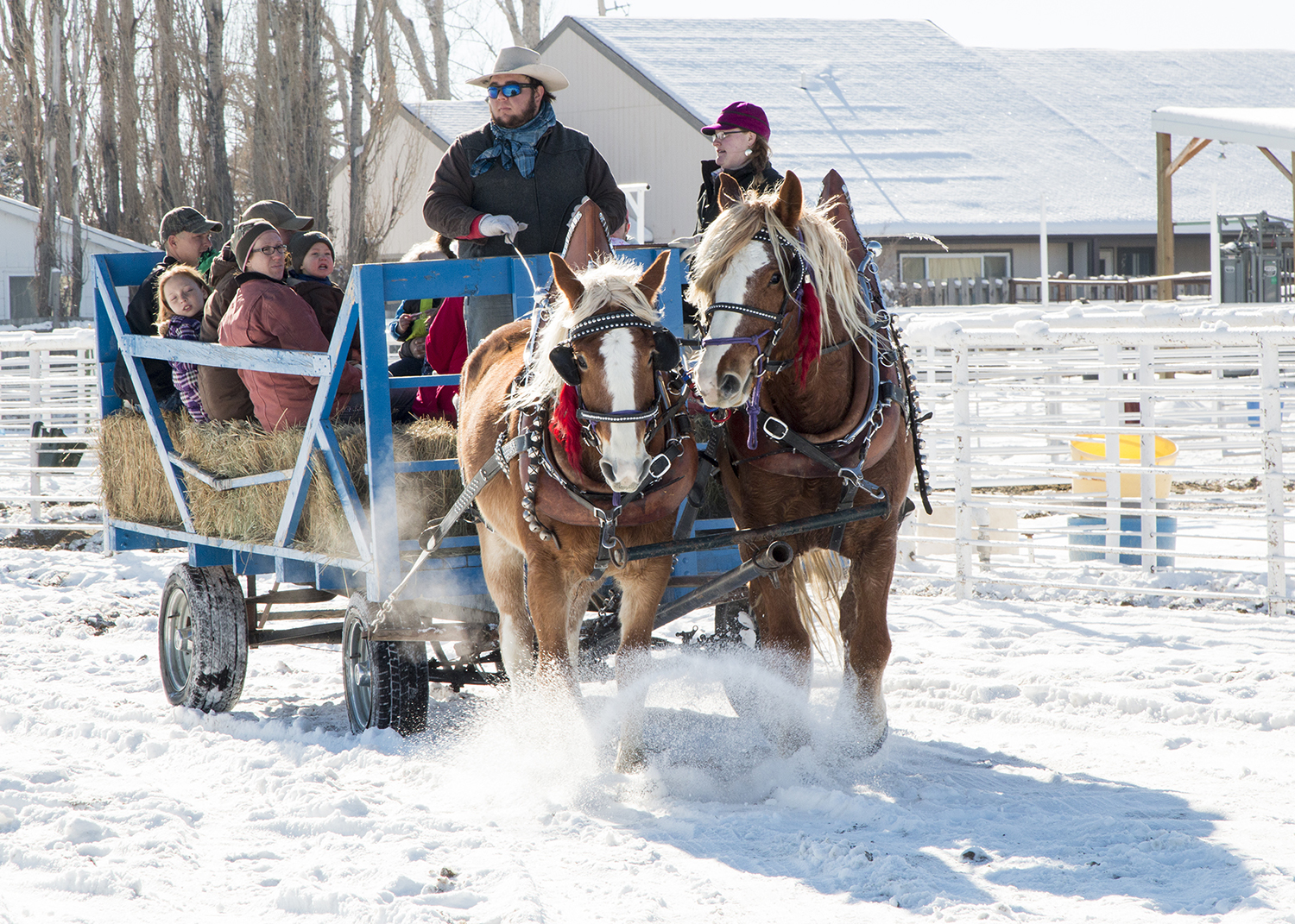 Family enjoying a sleigh ride
